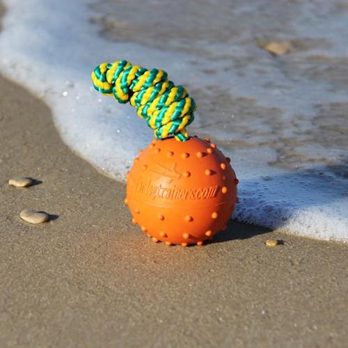 Meilleurs jouets pour chiot - anipassioncom
