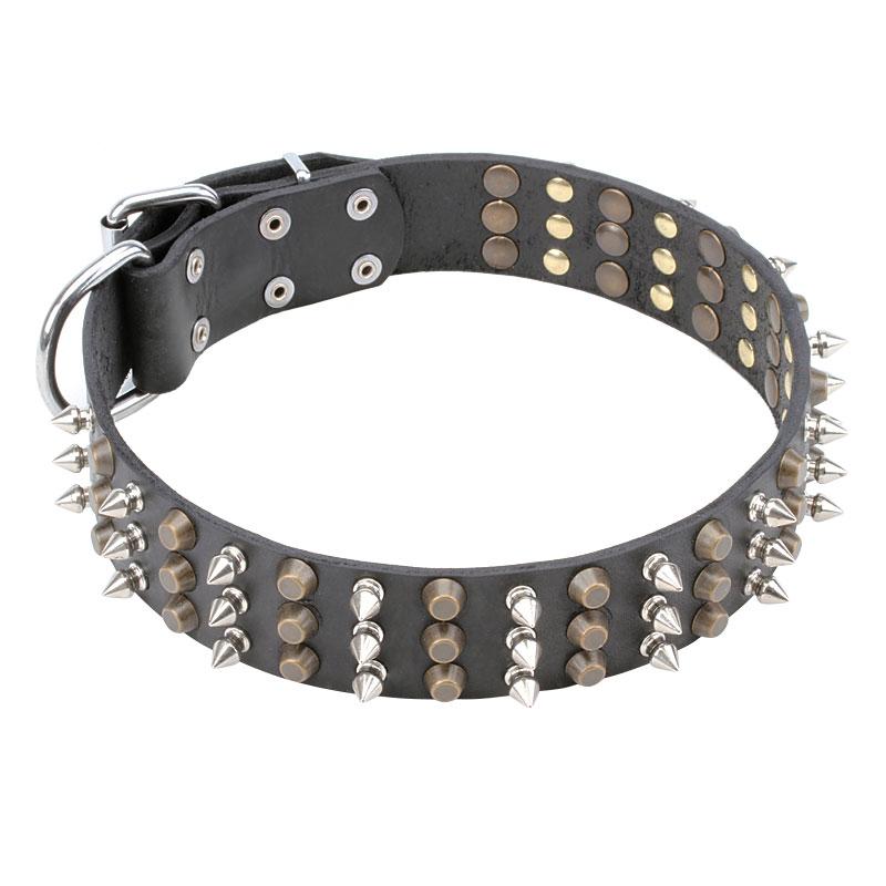 collier pour chien haut de gamme